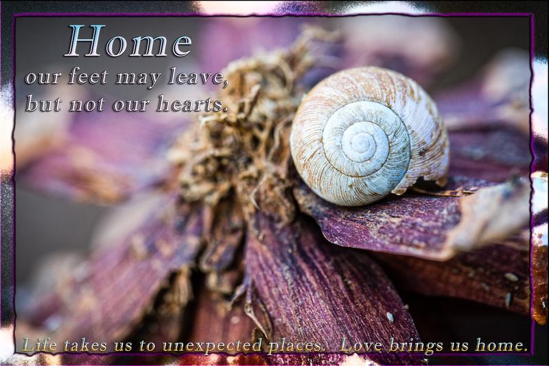 Love brings us home